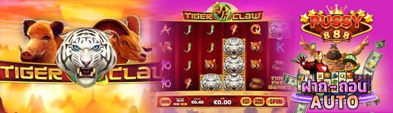 รีวิวเกมสล็อต Tiger Claw